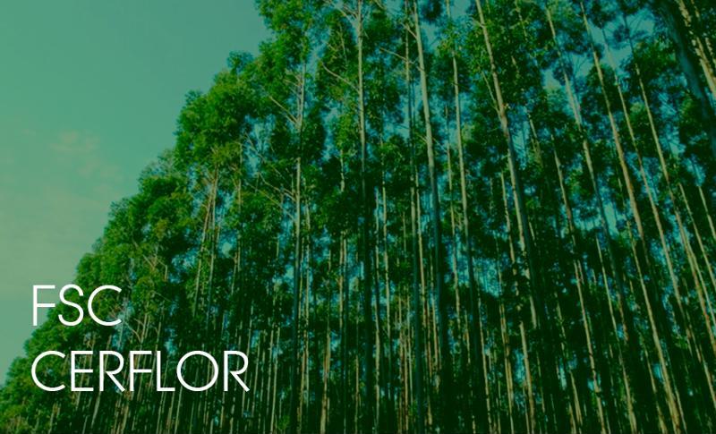 Certificação Florestal – FSC